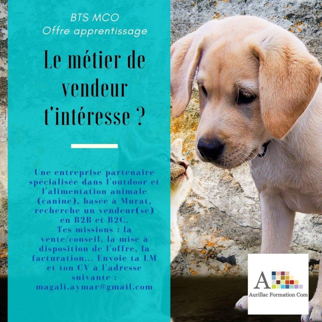 Offre apprentissage BTS MCO Aurillac